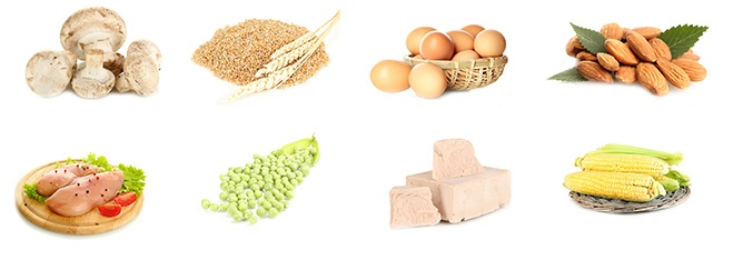 vitamin B3 i metafolin