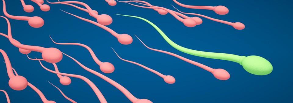 Da li godine utiču na mušku plodnost?