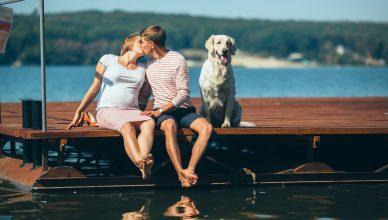 trudna žena, trudnica, majka, trudnoća, par, parovi, potomstvo, otac, roditelji, muž, suprug, ljubav, porodica, sreća, pas